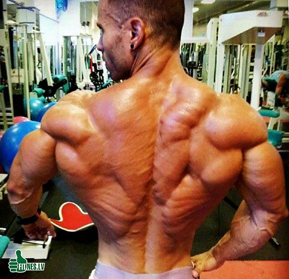 http://img.fitnes.lv/2/bodybuilding_927876638.jpg