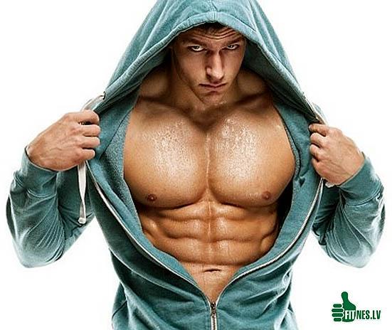 http://img.fitnes.lv/2/bodybuilding_928736537.jpg
