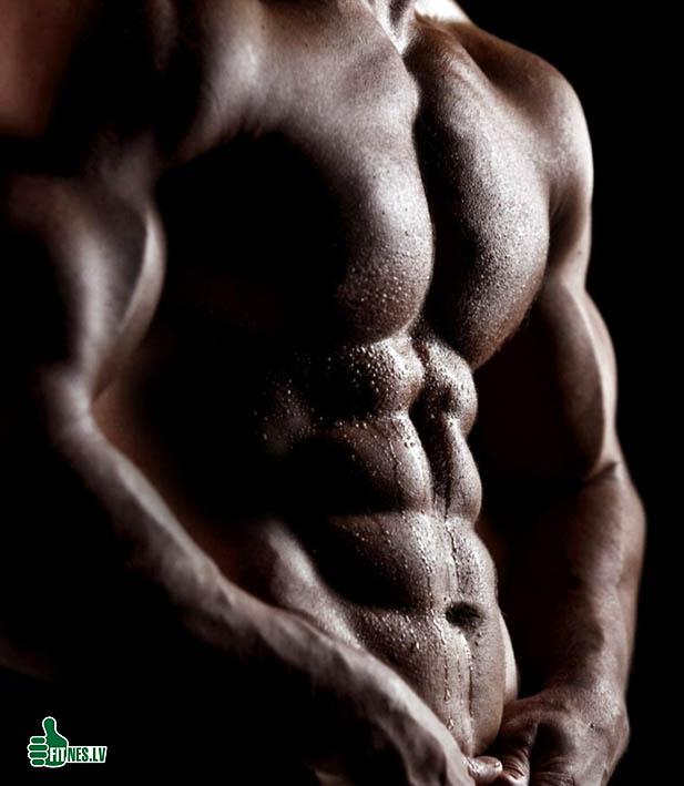 http://img.fitnes.lv/2/bodybuilding_92876133.jpg