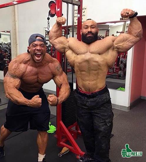 http://img.fitnes.lv/2/bodybuilding_937647824522.jpg