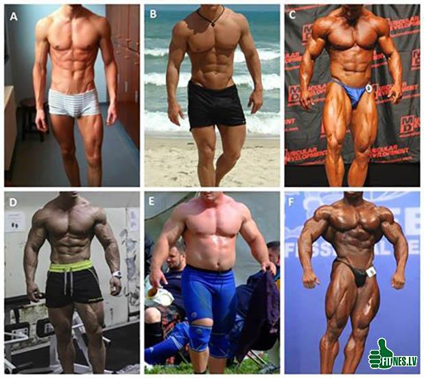 http://img.fitnes.lv/2/bodybuilding_9384667.jpg