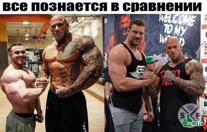 http://img.fitnes.lv/2/bodybuilding_98276653774.jpg