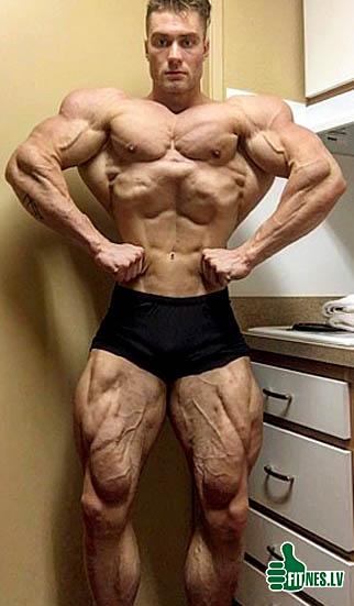http://img.fitnes.lv/2/bodybuilding_98293729.jpg