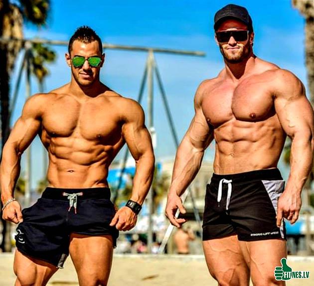 http://img.fitnes.lv/2/bodybuilding_98374987.jpg