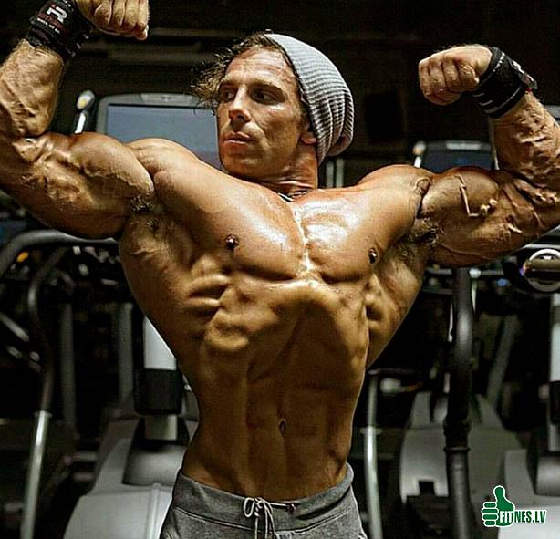 http://img.fitnes.lv/2/bodybuilding_98389088.jpg