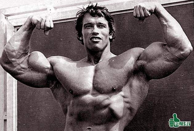 http://img.fitnes.lv/2/bodybuilding_988004.jpg