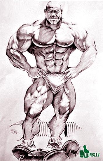 http://img.fitnes.lv/2/bodybuilding_anime_837457.jpg