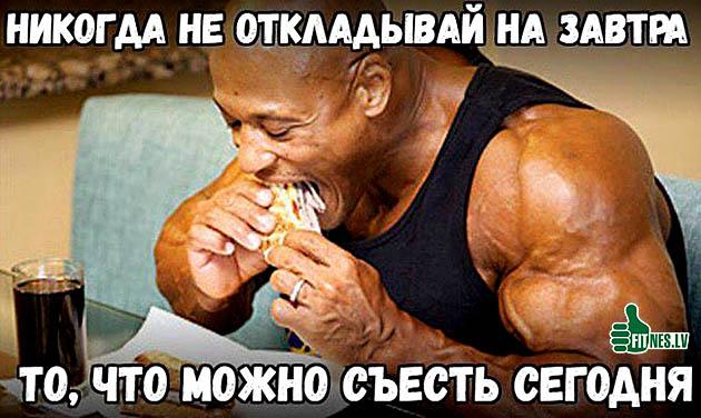 http://img.fitnes.lv/2/bodybuilding_humour_0989038.jpg