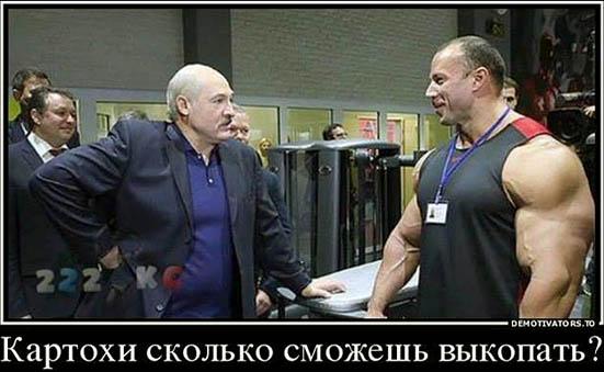 http://img.fitnes.lv/2/bodybuilding_humour_293779.jpg