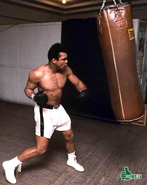 http://img.fitnes.lv/2/boxing_399487.jpg