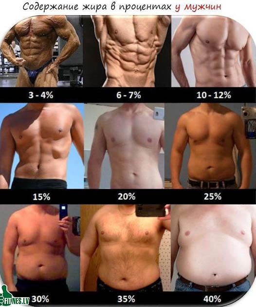 http://img.fitnes.lv/2/fat_7263334.jpg