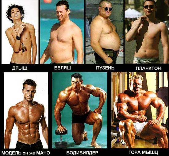 http://img.fitnes.lv/2/fitness_centrs_94713.jpg