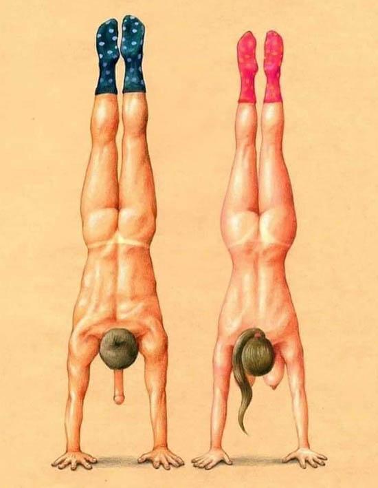 http://img.fitnes.lv/2/humour-spotrs-785457.jpg