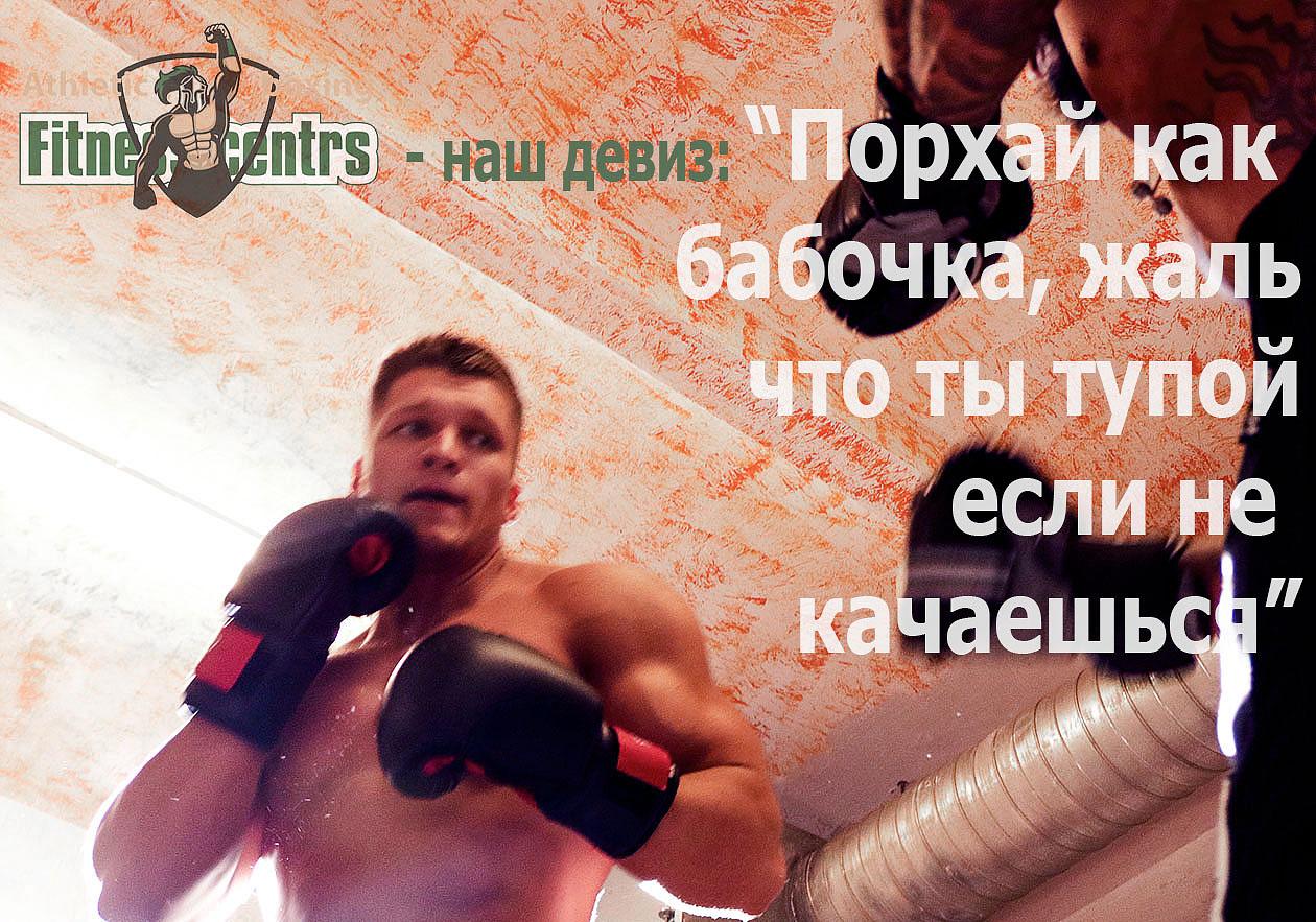 http://img.fitnes.lv/2/humour_boxing_278191872.jpg