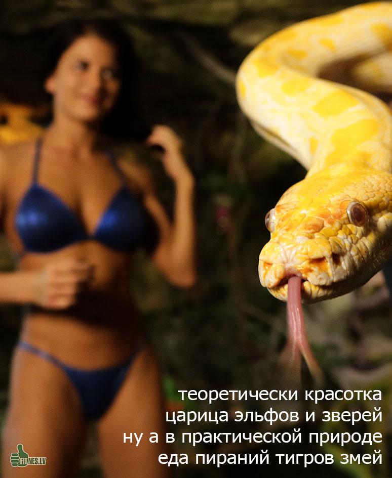 http://img.fitnes.lv/2/humour_photo_6282655_7315.jpg