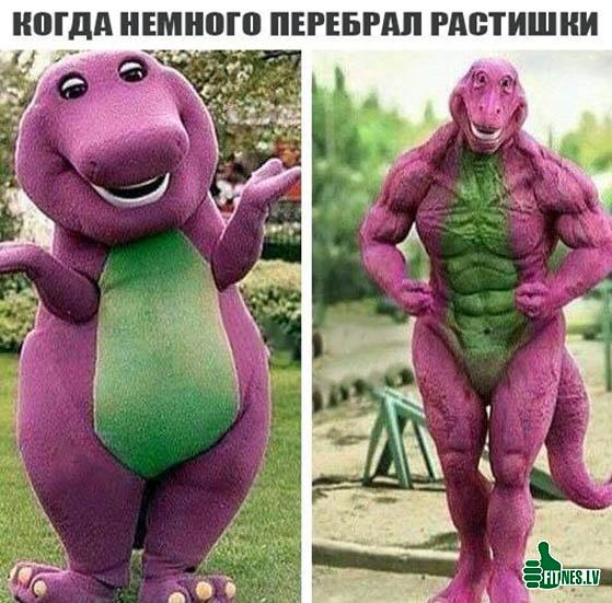http://img.fitnes.lv/2/humour_photos_989388444.jpg