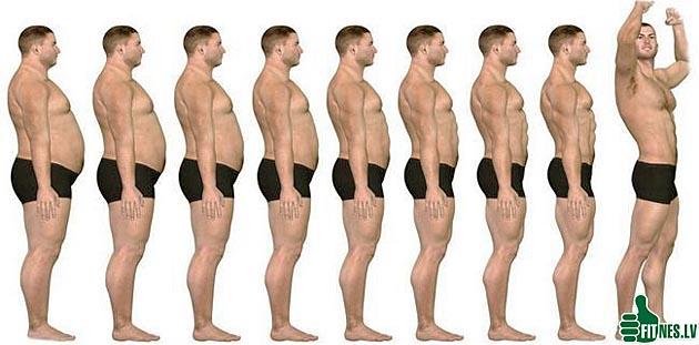 http://img.fitnes.lv/2/testosteron_209880.jpg