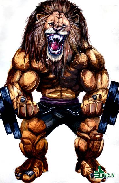 http://img.fitnes.lv/2/testosteron_572398.jpg