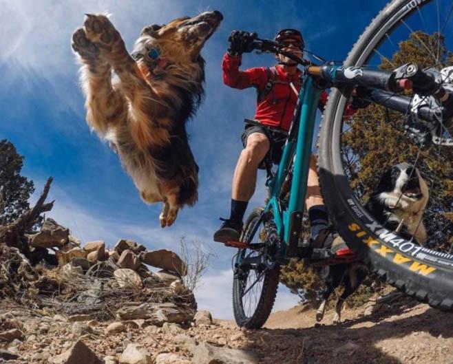 http://img.fitnes.lv/2/velo-bike-788755.jpg