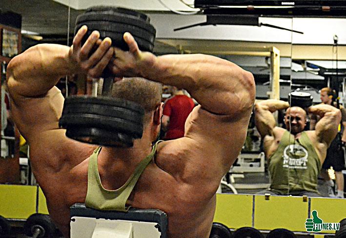 http://img.fitnes.lv/bodybuilding_0008.jpg