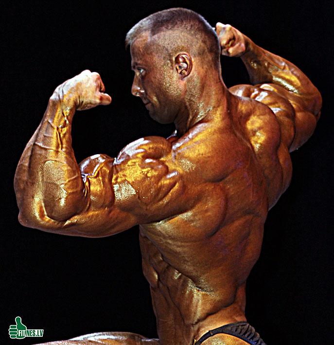 http://img.fitnes.lv/bodybuilding_312978.jpg