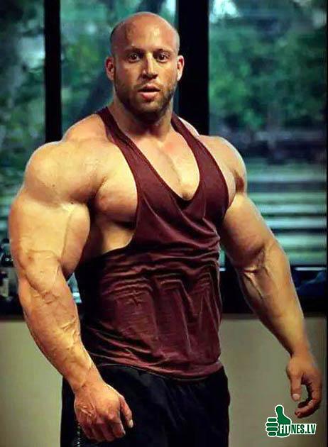 http://img.fitnes.lv/bodybuilding_3773.jpg