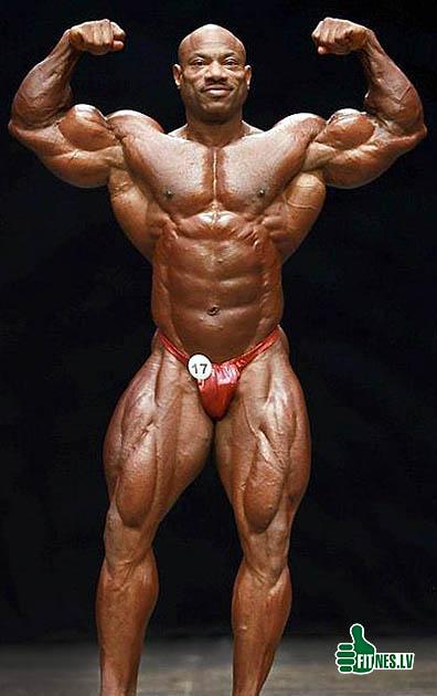 http://img.fitnes.lv/bodybuilding_48209.jpg