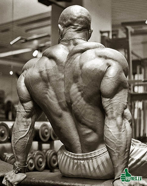 http://img.fitnes.lv/bodybuilding_48933.jpg