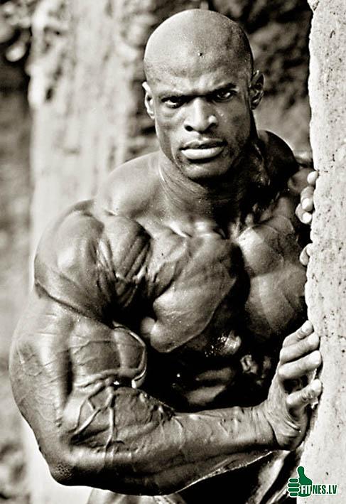 http://img.fitnes.lv/bodybuilding_810234.jpg