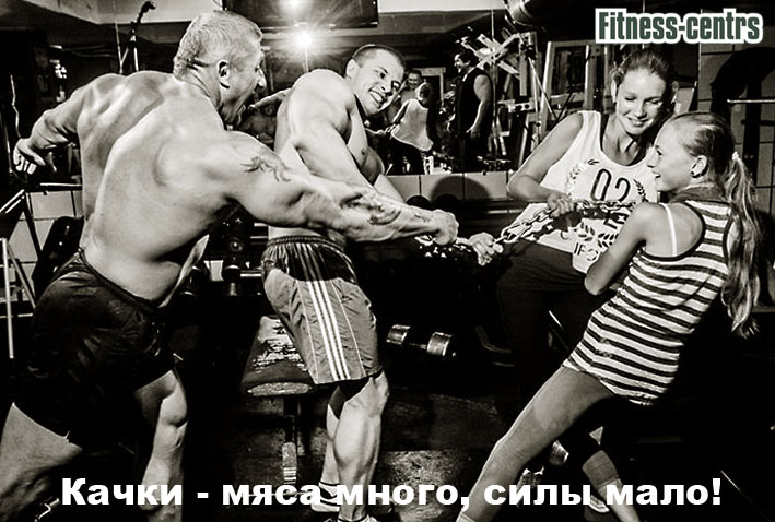 http://img.fitnes.lv/bodybuilding_humor_foto_48026.jpg
