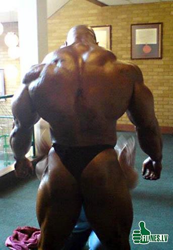 http://img.fitnes.lv/extreme_bodybuilding_2099123.jpg