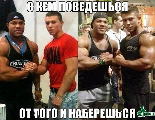 http://img.fitnes.lv/humor_foto_21109.jpg